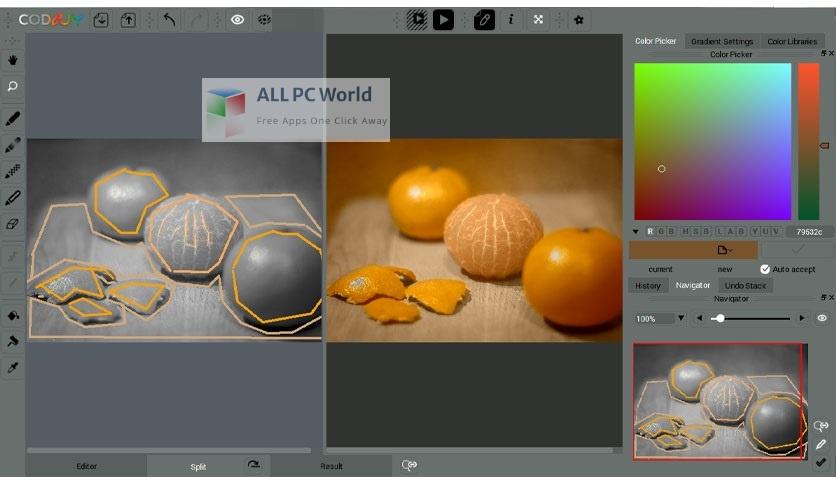 CODIJY Colorizer Pro 4 Setup Free Download