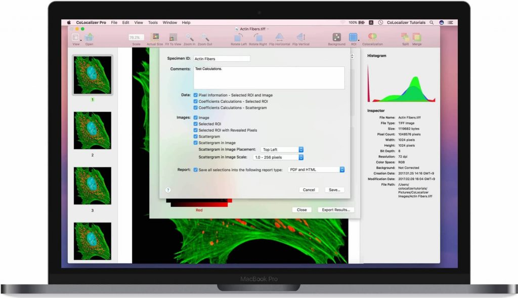 CoLocalizer-Pro-7-for-Mac-Free-Download